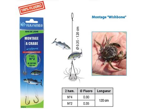 39_montage_crabe.jpg