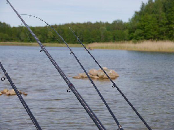 action canne à pêche