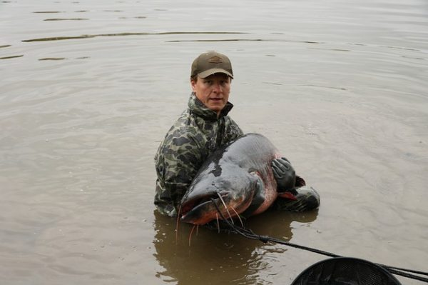pêche silure matériel